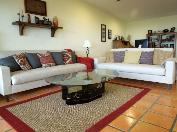 Yes, the fish tank coffee table is awesome, but look at the sofas!